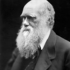 チャールズ・ダーウィンが『ビーグル号航海記』に遺した地震についての名言(イギリスの自然科学者)[今週の防災格言332]