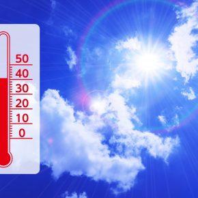 ついに猛暑は「災害」へ。亜熱帯化が私たちにもたらす変化とは?
