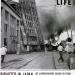 福井地震(1948年)で震度7を体験したカール・マイダンス(米国の写真家・ジャーナリスト)が報じた米雑誌ライフの特集記事から[今週の防災格言547]